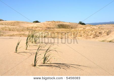 Kelso Sand Dunes, Mojave Desert, California