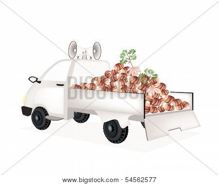 Fresh Taroes On A Pickup Truck Ready For Sale