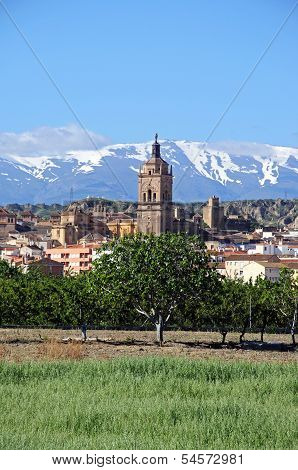 Cathedral in town, Guadix, Spain.