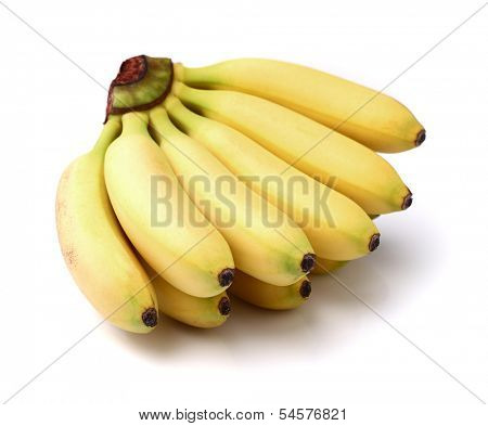 Bunch of baby bananas
