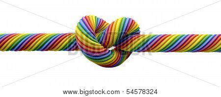Tie The Knot Gay Marriage