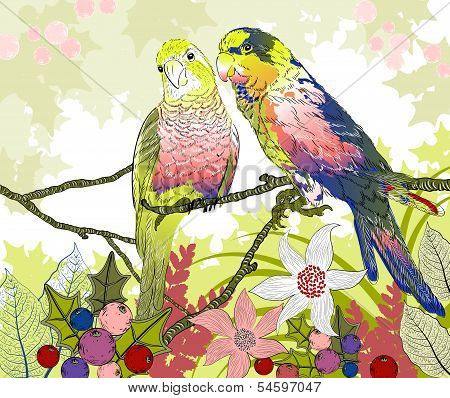 Floral illustration of a pair of budgies