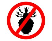 image of lice  - Prohibition sign for lice on white background - JPG