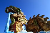 pic of annal  - God dragon in suphanburi province of thailand - JPG