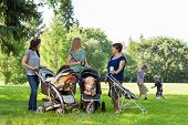 image of stroll  - Happy mothers with baby strollers talking in park - JPG