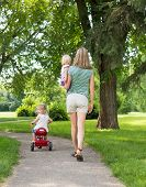 stock photo of stroll  - Full length rear view of mid adult woman with children strolling in park - JPG