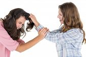 Side view of an angry young woman pulling female's hair in a fight over white background
