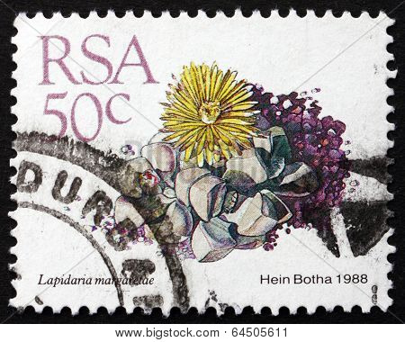 Postage Stamp South Africa 1988 Karoo Rose, Succulent Plant