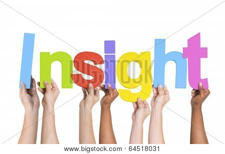 Multiethnic Group of Hands Holding Insight
