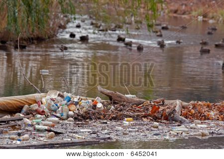 Garbage Carelessly Left Near A Duck Pond