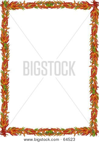 Chili Pepper Border