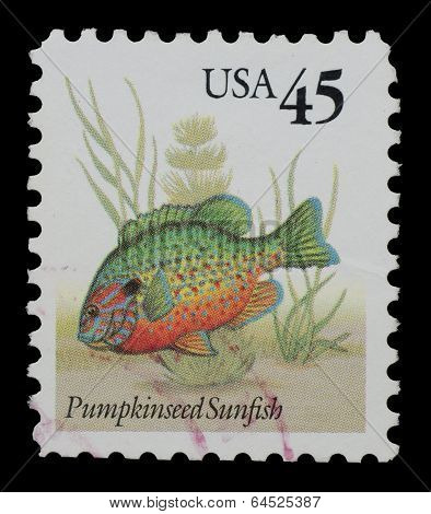 United States Of America - Circa 2011: A Stamp Printed In Usa Shows Image Of  Pumpkinseed Sunfish, C