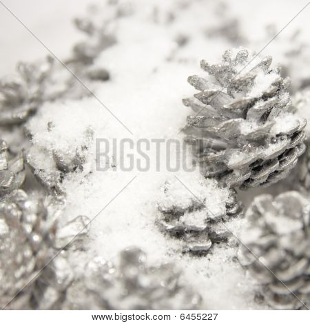 Silver Pine Cones In The White Snow (shallow Dof)