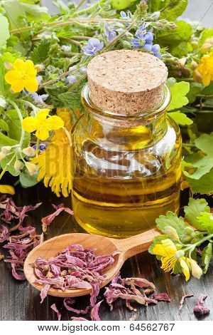 Essential Oil And Healing Herbs