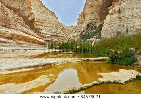 Magnificent canyon and creek.  Ein Avdat National Park in the Negev desert