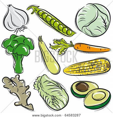 Set Of Vegetable, Garlic, Peas, Cabbage,  Vector