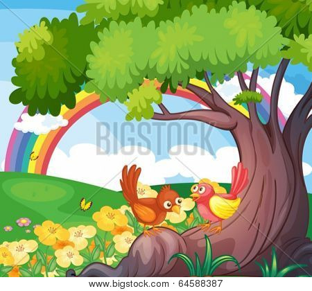 Illustration of the birds under the tree with a rainbow in the sky