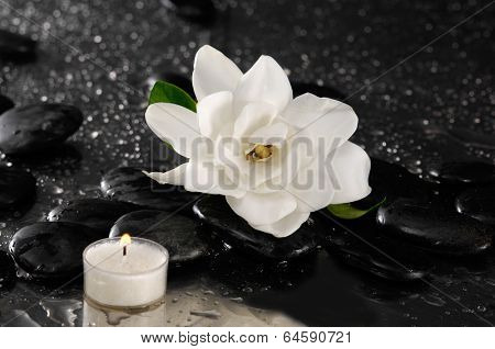 Still life with gardenia flower and candle on pebbles