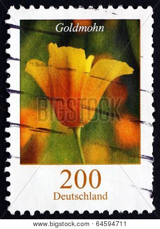 Postage Stamp Germany 2007 Golden Poppy, Flowering Plant