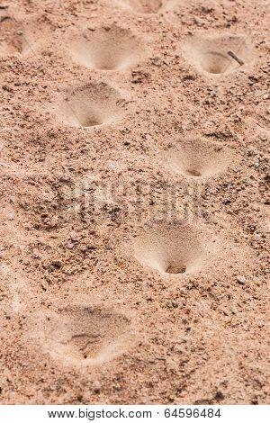 Sand Pit Traps.