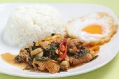 picture of curry chicken  - Chicken panang curry with rice and fried egg on the plate - JPG