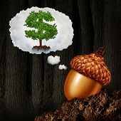 picture of acorn  - Investment planning business concept as an acorn seed dreaming about future growth ambition as a dollar sign money tree in a dream bubble as a financial and finance metaphor for long term investor success and wealth destiny - JPG
