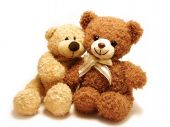 foto of teddy-bear  - two teddy - JPG