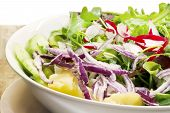 stock photo of escarole  - delicious salad close up for healthy meal - JPG