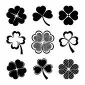 image of shamrocks  - vector icons of shamrock and four leaf clover collection for St Patrick day - JPG