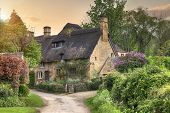 stock photo of english cottage garden  - Pretty thatched Cotswold cottage in the village of Stanton - JPG
