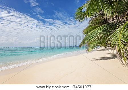 Dreamy Sandy Beach