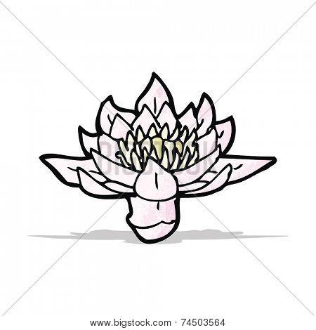 waterlily cartoon