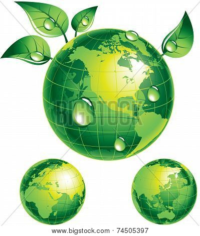 Flourishing globe