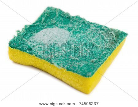 Dirty Green And Yellow Kitchen Sponge With Soap Suds On White Background