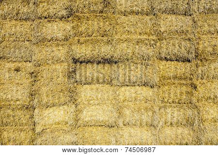 Bale Of Straw In Autumn In Intensive Colors