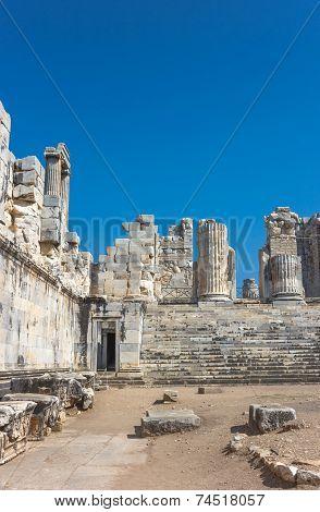 Temple Apollo In Didim