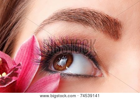 Closeup Of Colorful Eyelash Extensions