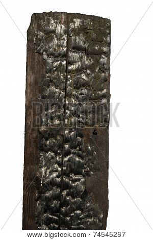 Charred Boards