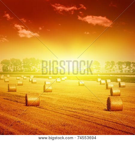 Field with hay bales and dramatic sunset.