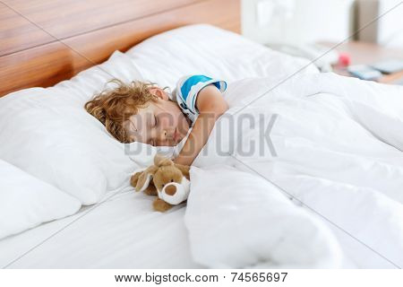 Adorable Kid Boy Sleeping And Dreaming In His White Bed With Toy