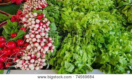 Lettuce and radishes for sale