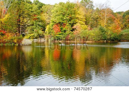 Colorful Fall Foliage Reflection On A Pond