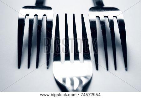 Three Forks