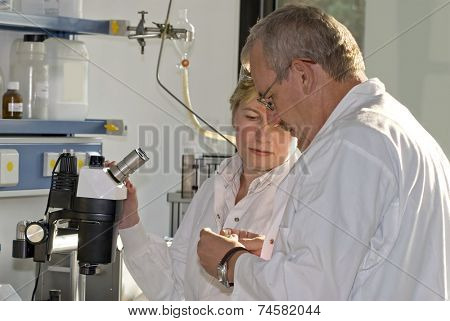 Two science technicians survey the results of their experiments