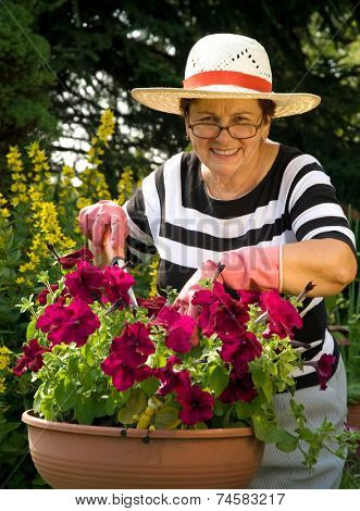 senior lady with her plants in the garden