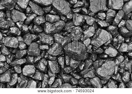 Coal Wet