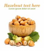 stock photo of cobnuts  - Ripe hazelnuts in wooden pot on white background - JPG