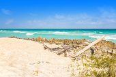 pic of playa del carmen  - Carribean sea scenery in Playacar  - JPG