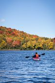 stock photo of canoe boat man  - A man canoeing in a lake during the fall in Canada