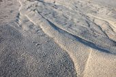 pic of rich soil  - Gray sand surface with rich and various texture - JPG